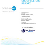 Group Culture Report BHR Training Everything DiSC